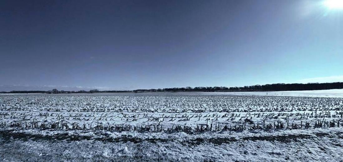 Nature Natural Light Rual Feild Landscape Panorama