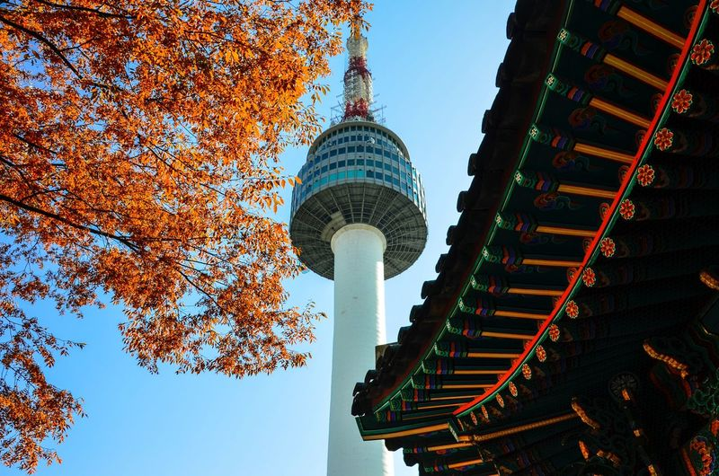 Low angle view of building against sky during autumn