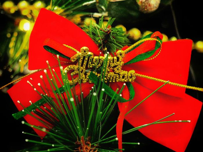 Merry Christmas to all.. 🎅🎄 Christmas 2017 Excitement On High Yearendmaxinal No People Close-up Christmas Indoors  Christmas Decoration Day