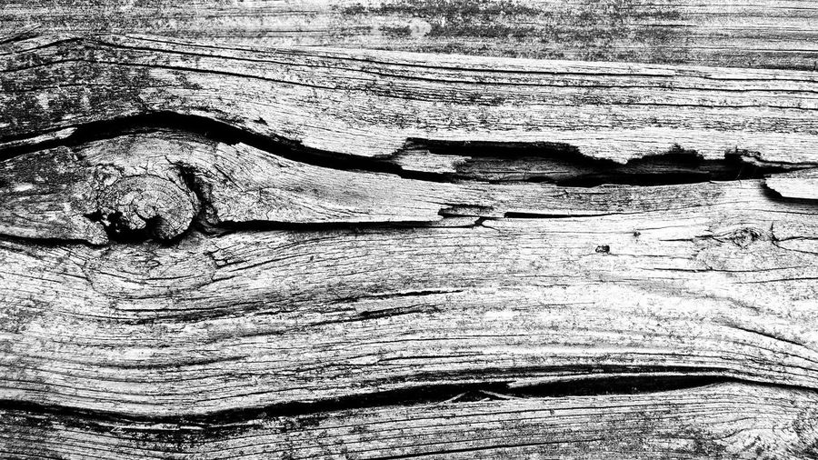 Full frame of knotted wood