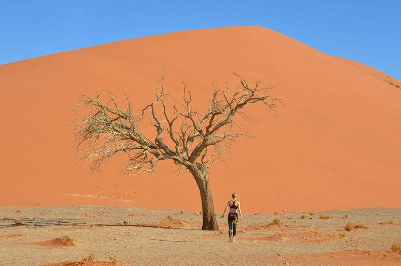 Rear view of person walking on sand dune against clear sky