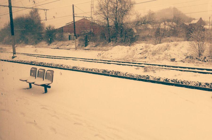 EyeEm Best Shots Photoismylife Cold Cold Winter ❄⛄ Photo Is My Hobby