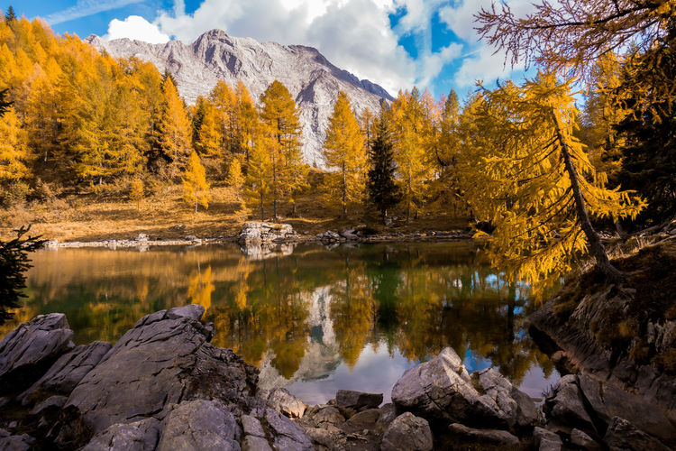 Colorful autumn landscape mountain. Mountains, lake and colrful trees. Italy, Friuli, Lake of Bordaglia. Water Beauty In Nature Tree Rock Plant Lake Tranquility Reflection Scenics - Nature Change Solid Autumn Rock - Object Nature Tranquil Scene No People Non-urban Scene Sky Idyllic Outdoors Autumn Collection Flowing Water Italy Friuli Venezia Giulia