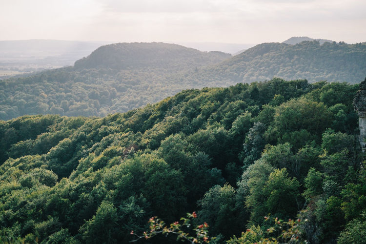 High angle view of trees and mountains against sky