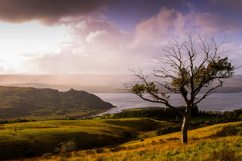 Castle Castle Varrich Kyle Of Tongue North Coast 500 Scotland Sutherland Beauty In Nature Day Landscape Mountain Nature No People Outdoors Scenics Scottish Highlands Sea Loch Views Sky Tranquility Tree Water