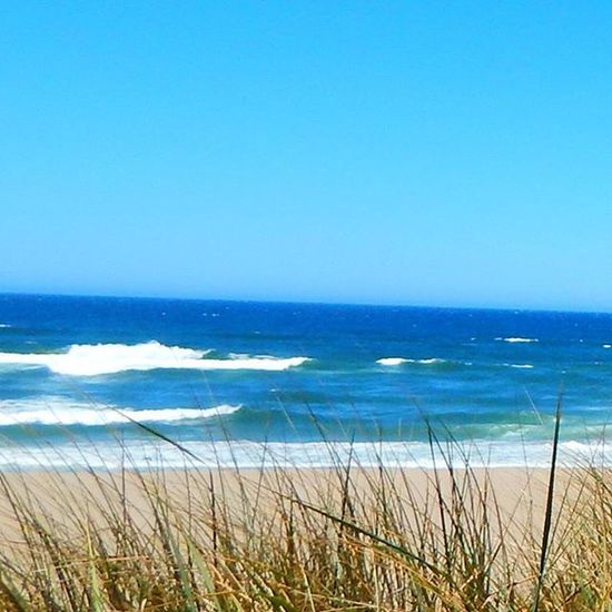 Crashingwaves Oregoncoast Beachlife Endlessblueskies Sand Beach Ocean Landscape Bluesky