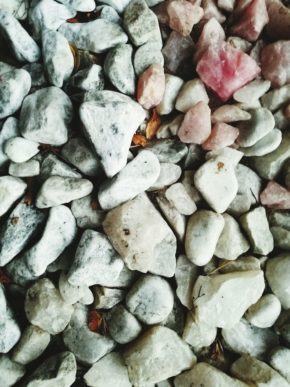 full frame, backgrounds, no people, large group of objects, pebble, nature, close-up, day, outdoors, freshness