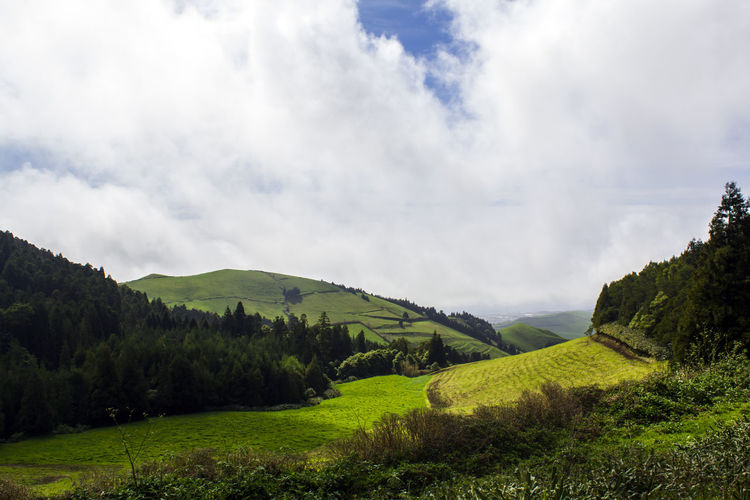 Rolling hills landscape Azores Rolling Landscape Scenic Top Beauty In Nature Cloud - Sky Countryside Coutryside Day Environment Fields Green Color Green Hills Green Island Hill Land Landscape Nature No People Non-urban Scene Outdoors Rolling Landscape Scenics - Nature Tranquil Scene Tranquility