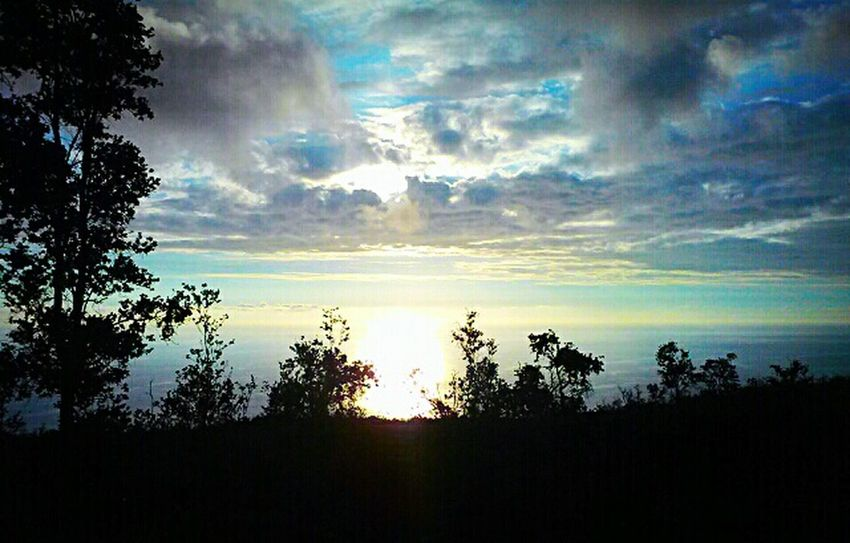 Hawaiian Ocean View Estates High Altitude Sunset Native Plant Life Trees Ohia Trees Silhouettes Hawaii Aloha
