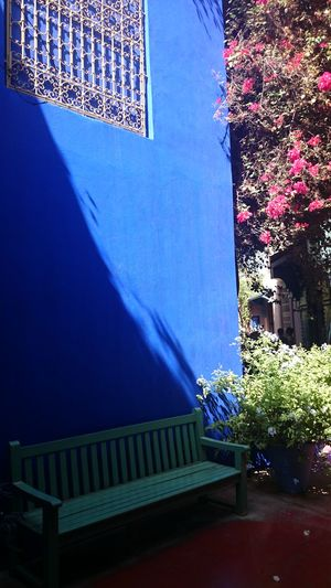 Majorelle Majorellegardens Majorellebleu Majorellegarden Marrakech Morocco Marrakech Banc Bench Benches Flowers,Plants & Garden Flowers Blue Bleu Majorelle Bleu Darkness And Light Light And Shadow Traveling Travel Street Furniture Street Fittings No Edit/no Filter Colour Of Life