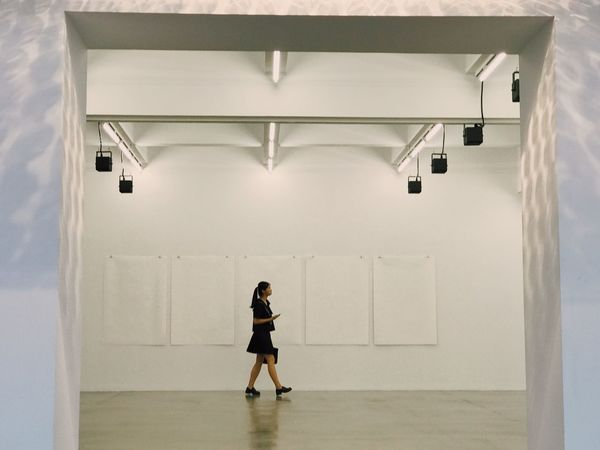 Exhibition. Full Length One Person Rear View Indoors  Walking Real People Architecture People