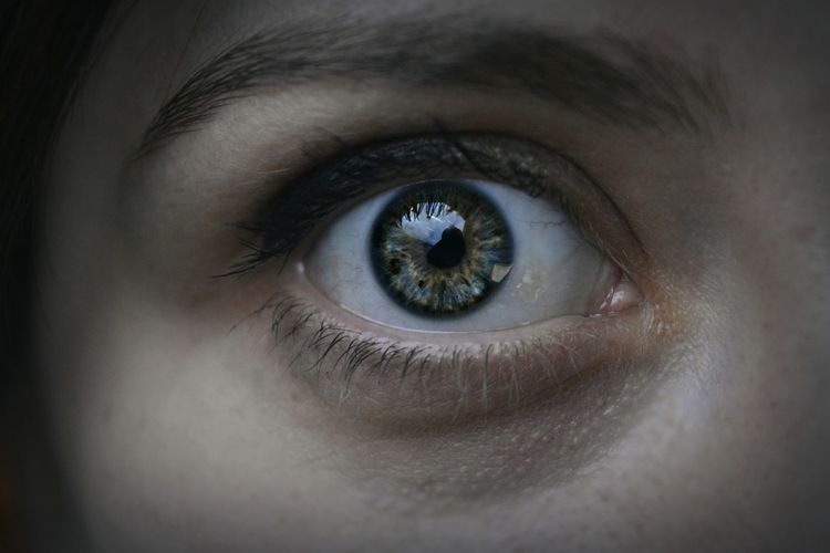 Extreme Close-Up Of Woman Eye