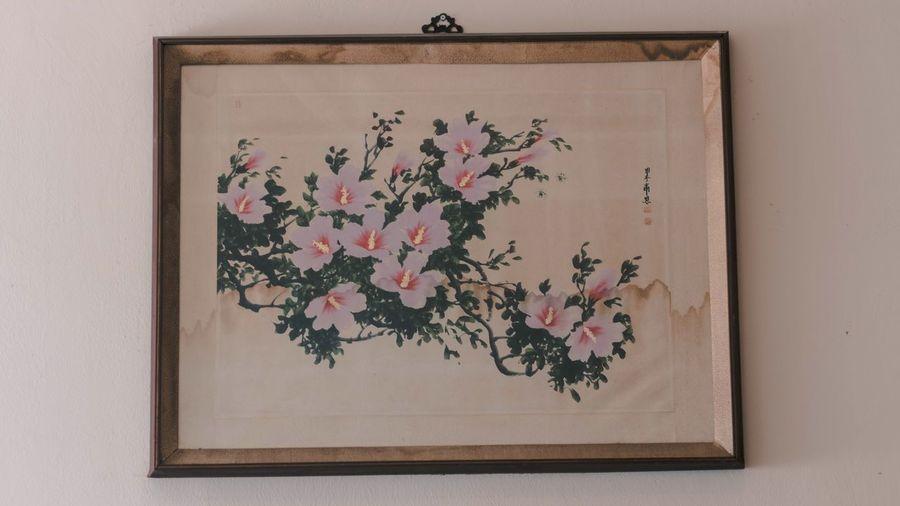 Love Korean Flower Hibiscus 🌺 Hibiscus Flower No People Indoors  Close-up
