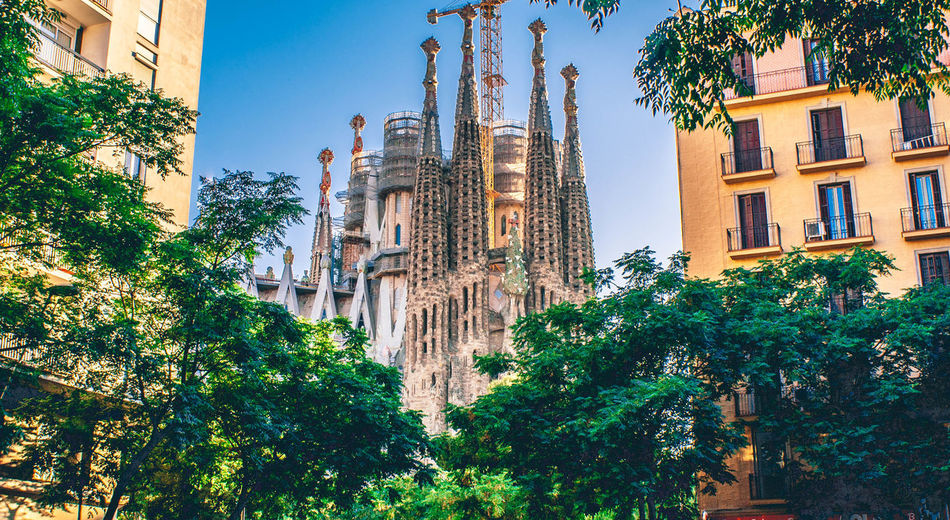 Tree Built Structure Building Exterior Architecture Plant Building Low Angle View Nature Religion No People Belief Place Of Worship City Spirituality Day Growth Sky Window Outdoors Sagrada Familia