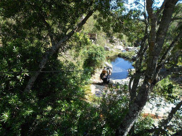 South Africa Green Nature Photography Nature No Filter Beautiful Ziplining Outdoors Enjoying Life