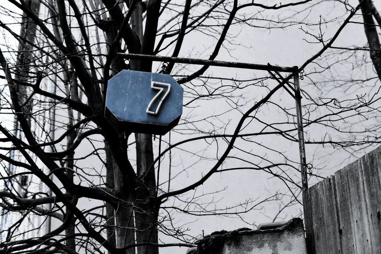 Neonlights Neon Lights Number 7 7 Blackwhitecolour Blanco Y Negro Noir Et Blanc Minimalism Number EyeEm Gallery Berlin House Sign Housenumber Tree Branch Bare Tree Sky Directional Sign Road Sign Street Name Sign Information Signboard