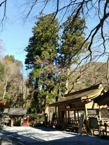 Love Japan 貴船神社 Best Moment 神社 冬の余暇 師走 ドライブ旅 京都 貴船 初冬 Shrine Shrine Of Japan Japan Photography Kyoto, Japan Scenery Early Winter Power In Nature Nature Beauty Built Structure Architecture Building Exterior Sky Clear Sky No People Nature