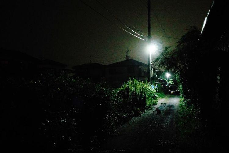 Night Illuminated Lighting Equipment No People Street Street Light City