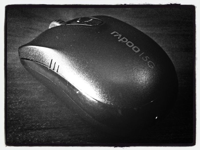 My mouse :)