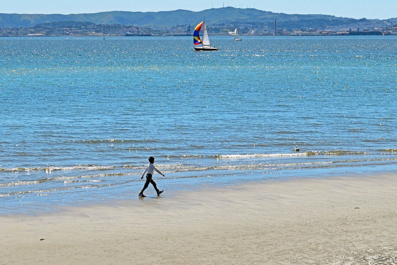 Walking The Mudflats @ Low Tide 4 Middle Harbor Port Of Oakland, Ca. San Francisco Bay Embarcadero Cove Boy Walking Tideline Tide Returning Low Tide Mudflats Breakwaters Water Enjoying Life Scenic View Hanging Out Freighters Sailboats Colorful Sails Hills Of San Francisco