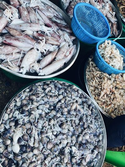 Fresh market seafood