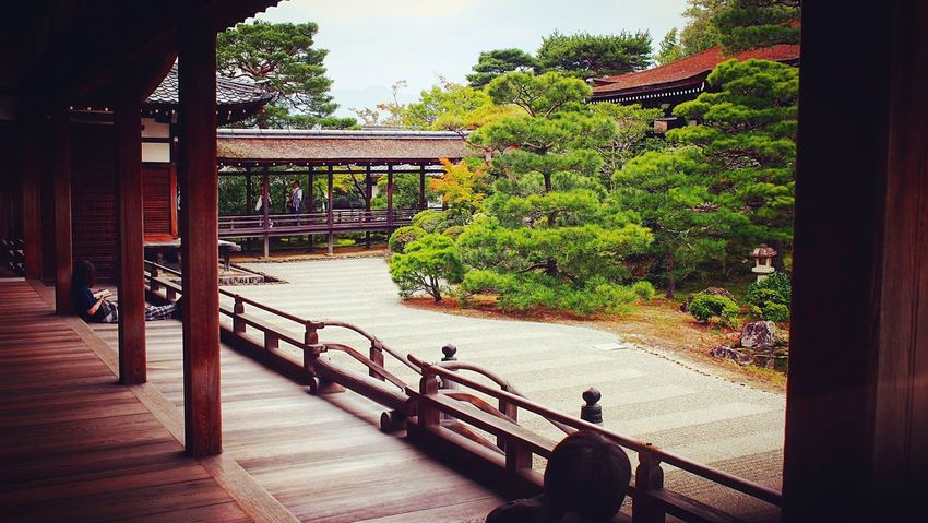 仁和寺 本坊 京都 Kyoto Kyoto, Japan Kyoto Garden Japanese Garden Formal Garden Hello World Relaxation Enjoying Life Relaxing 2015