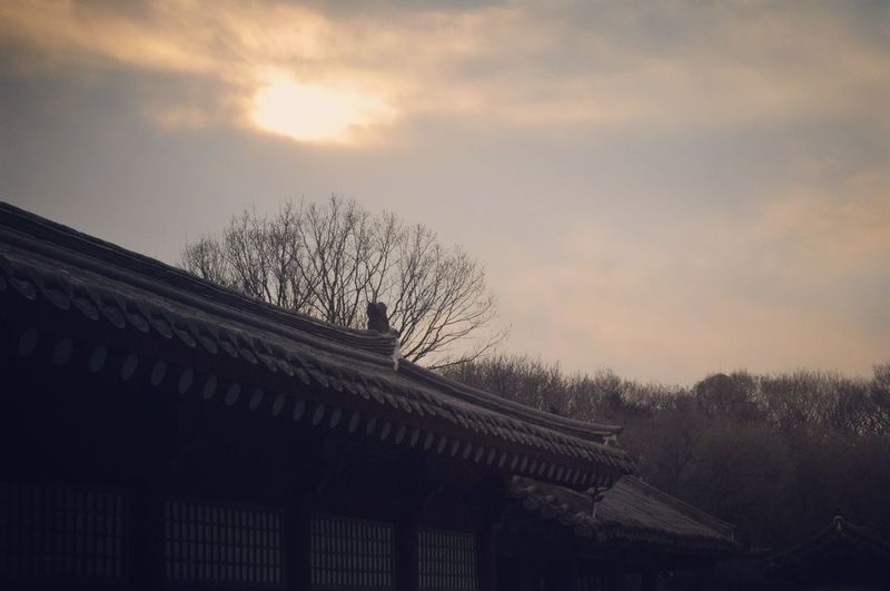 Korea Seoul ㅈ 묘Sky And Clouds Beautiful Photography Photographer Photoshoot Jongmyo History ㄱ 궁Ancientplace