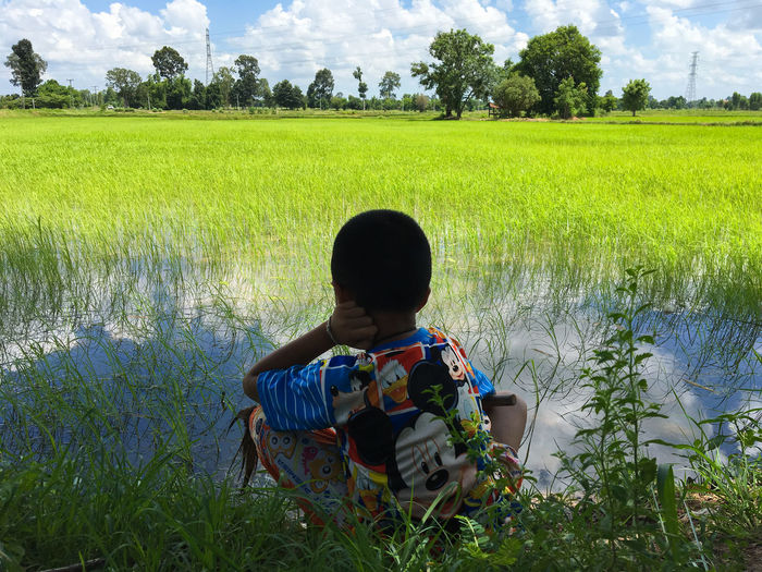 Rear View Of Boy Crouching At Rice Paddy