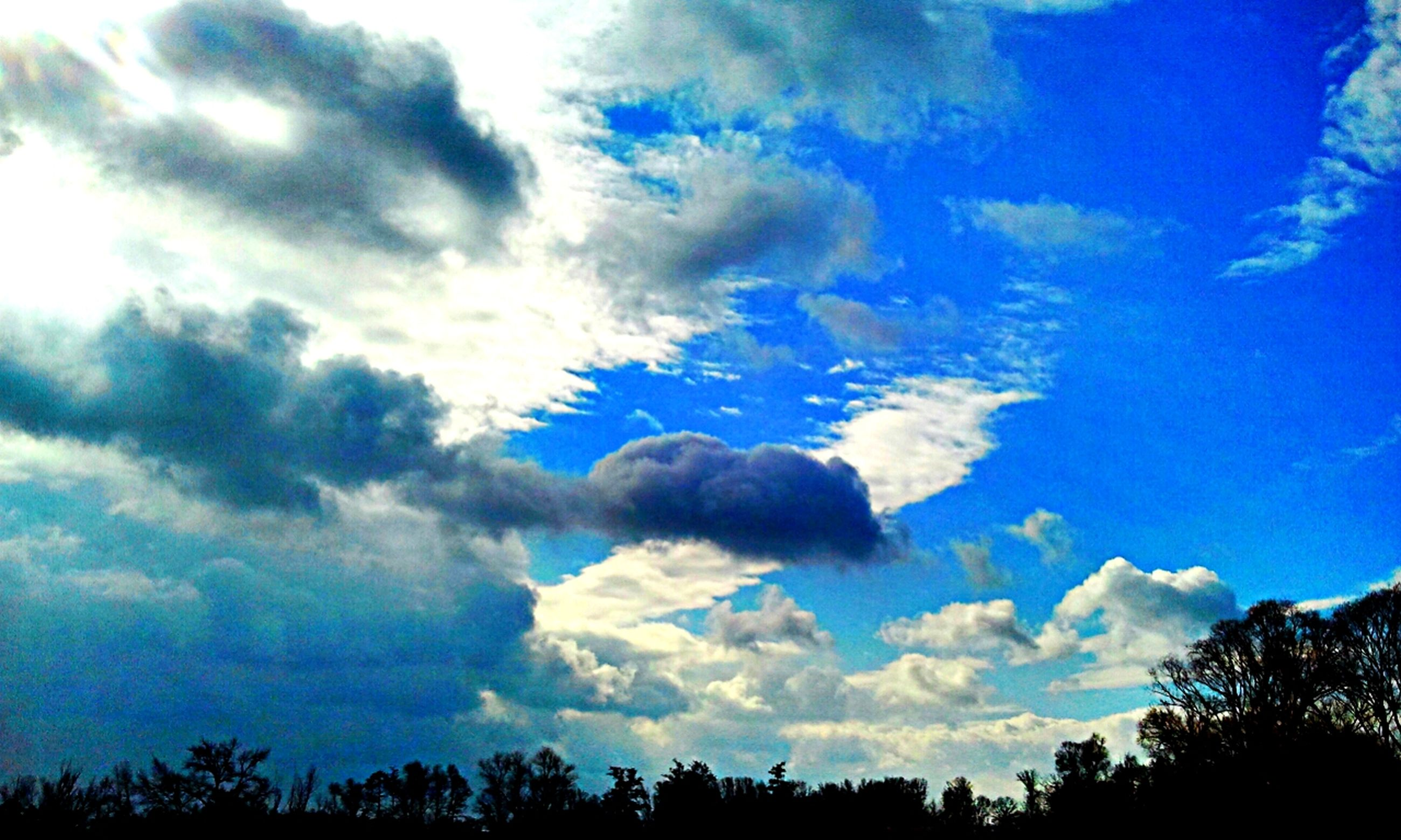 sky, low angle view, blue, silhouette, cloud - sky, tree, tranquility, beauty in nature, scenics, cloud, tranquil scene, nature, cloudy, outdoors, idyllic, no people, day, cloudscape, dusk, growth