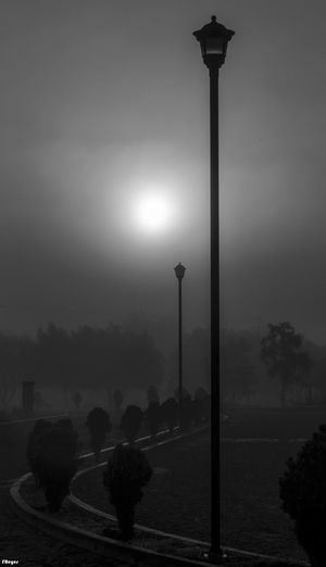 #blackandwhite #dawn #lanterns #mistymorning #photoart #photoartist Nostalgic Landscape Road Clouded Sun Homeland. 💖