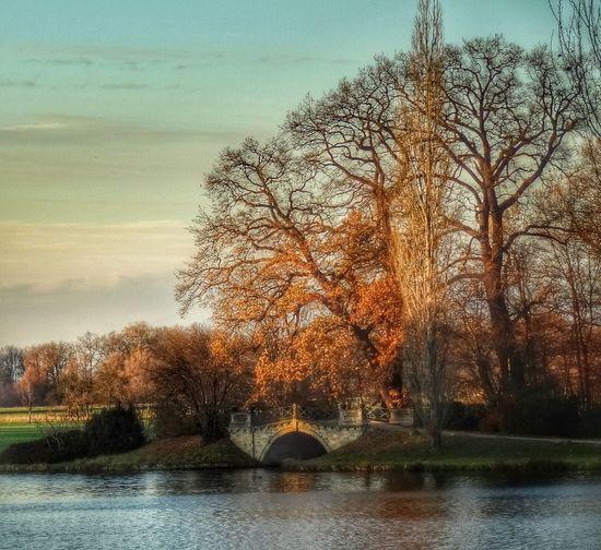 Wörlitz EyeEm Best Shots Landscape Clouds And Sky