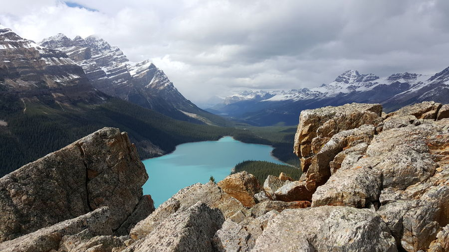 Scenic view of peyto lake