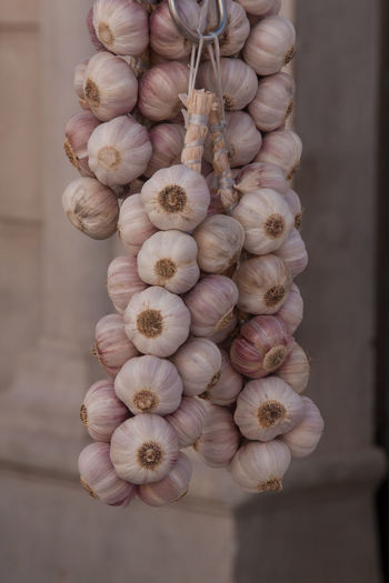Freshness Garlic Market Bunch Close-up Day Flower Focus On Foreground Freshness Garlic Bulb Hanging Healthy Eating Human Hand Large Group Of Objects No People Raw Food