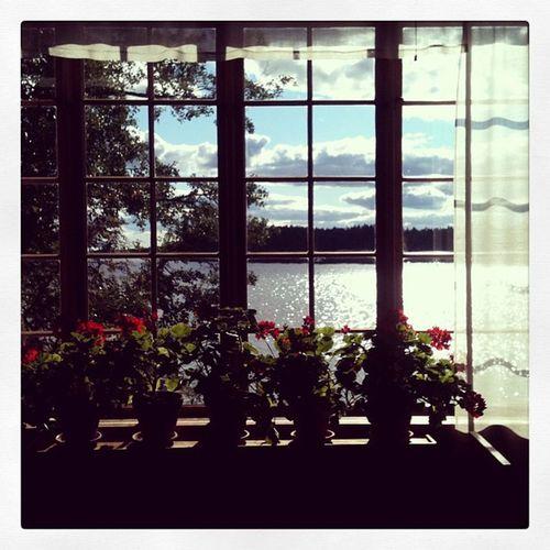 ViewFrom  The Window Halosentalo :)