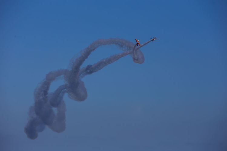 Blue Skyporn Airplane Acrobatic Activity Smoke Sea Nature Sky Airshow Low Angle View Air Vehicle One Animal Animals In The Wild Flying Animal Wildlife Animal Themes Day No People Motion Outdoors Mode Of Transportation Animal Clear Sky on the move Marine Directly Below Airshow