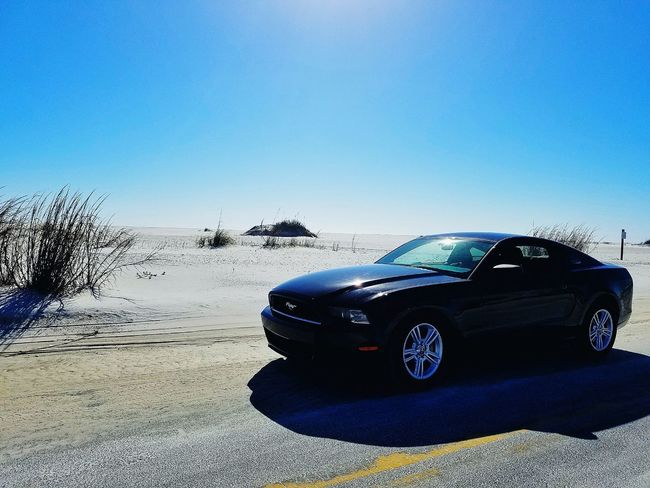 A Ford Mustang on the beach is as American as apple pie. Ford Mustang Fordmustang Transportation CarNo People Land Vehicle Sky Clear Sky Day Outdoors Beach Beachlife Beachside Drive Florida Pensacola Pensacola Florida Pensacola Beach Motorsport Nature First Eyeem Photo