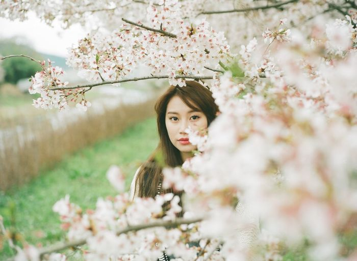 Portrait of young woman standing by flowering tree at park