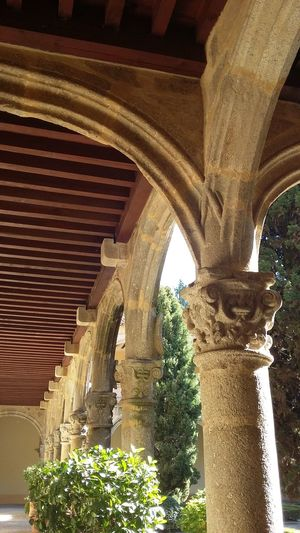 Church Built Structure Architecture History Low Angle View Architectural Column Tree
