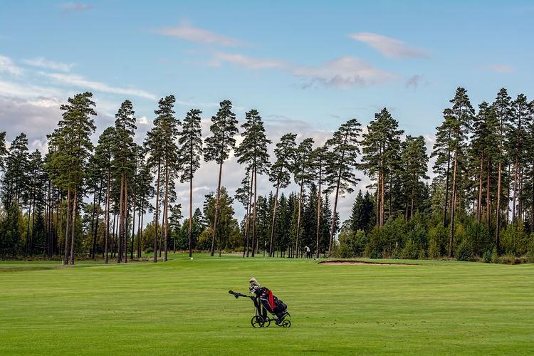 golfer and golf