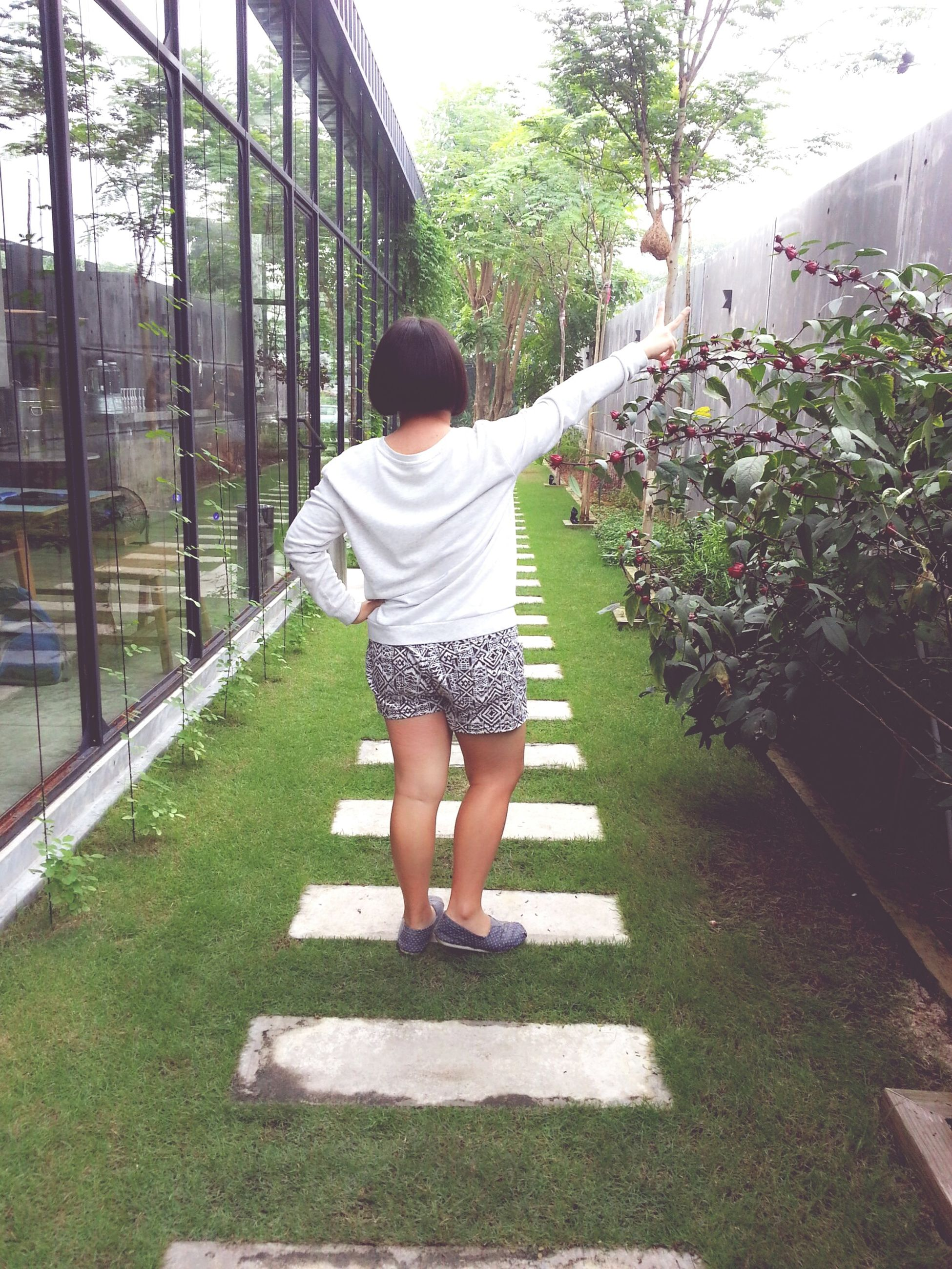 full length, childhood, railing, casual clothing, lifestyles, tree, leisure activity, rear view, grass, elementary age, park - man made space, standing, sunlight, person, boys, day, plant, girls