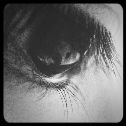 My eye~眼睛可以看清一切,可以看清事实,早安✡ Good Morning Good Morning! Eyes That's Me