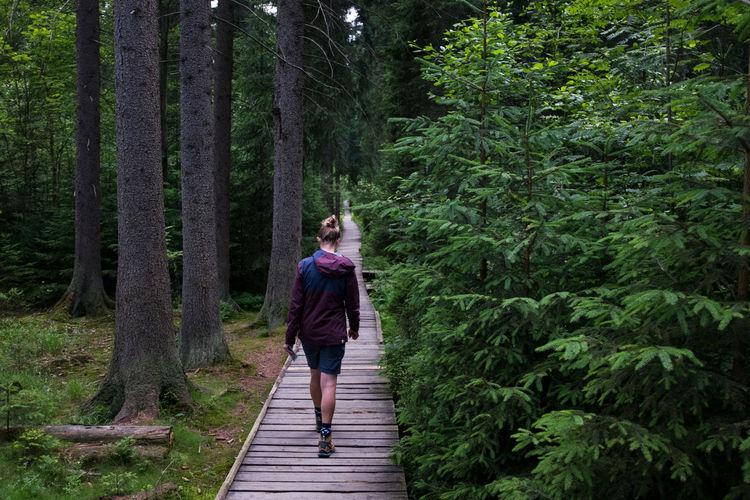 Full length of woman walking on boardwalk in forest