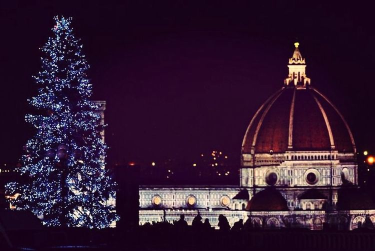 Christmas Tree Florence HelloXmas Happy