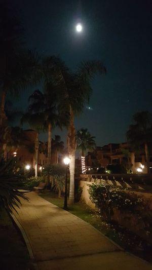 Fría Luna Llena en Navidad desde Estepona First Eyeem Photo