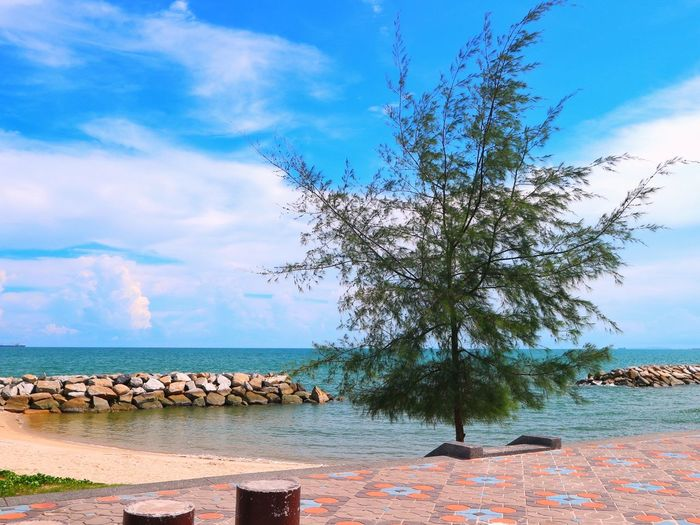 Sky Cloud - Sky Sea Tree Water Nature Outdoors Beach Landscape Scenics Beauty In Nature No People Horizon Over Water Vacations Blue Day