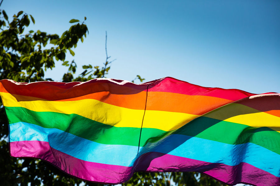Multi Colored Sky Day Nature Blue No People Clear Sky Low Angle View Outdoors Striped Sunlight Flag Plant Environment Tree Textile Wind Red Rainbow Colors Rainbow Flag Symbol Homosexual Love Transgender Positive Vibes HUMANITY