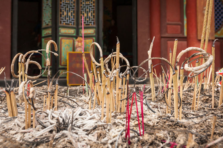 Burning Incense Chinese Tradition Faith Ritual Tradition Abundance Asian Tradition Belief Building Burning Incense Sticks Burning Stick Chinese Chinese Culture Incense Incense Sticks No People Outdoors Religion Scent Sticks Scented Scented Sticks Selective Focus Sticks Traditional