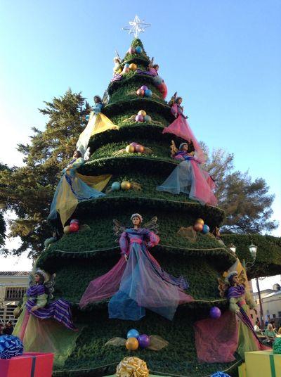 Christmas Tree Comitan, Chiapas Traveling