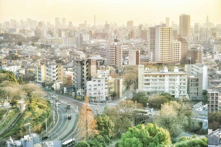 東京北区の北とぴあ展望台からの眺め。 Tokyo Cityscapes Tokyo Cityscape TOWNSCAPE Tokyo City View Buildings Overlay Editing Overlay My Edit✨✌ Enjoying Life From My Window From My Point Of View EyeEm Best Shots EyeEm Best Edits