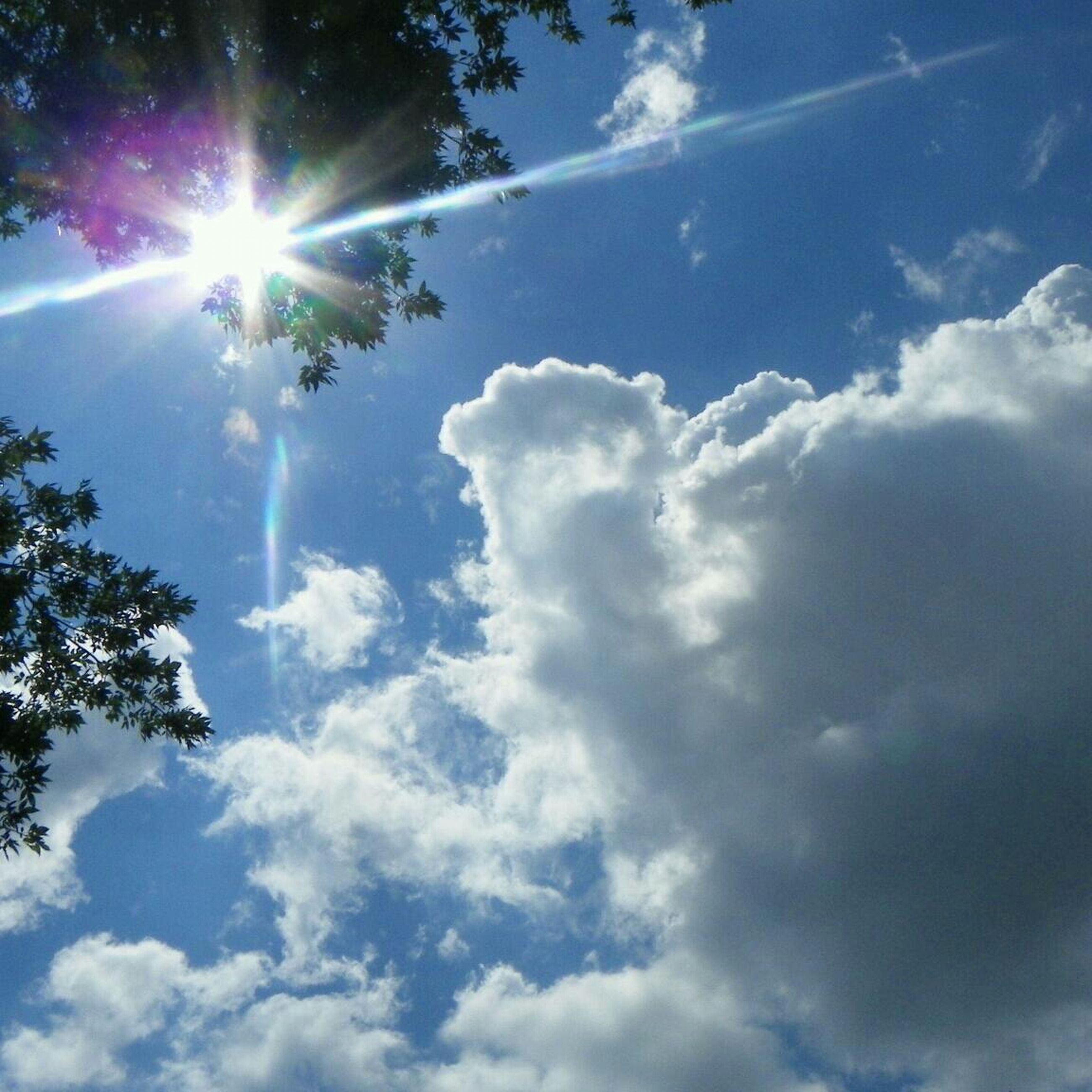 sun, sunbeam, sky, sunlight, lens flare, low angle view, beauty in nature, cloud - sky, tranquility, bright, sunny, nature, scenics, tranquil scene, blue, cloud, idyllic, day, tree, outdoors